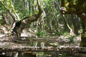 Potami Şelalesi, muhteşem bir doğa